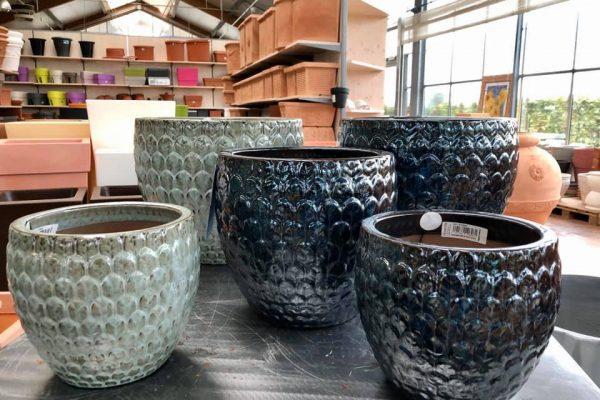vasi ceramica 1